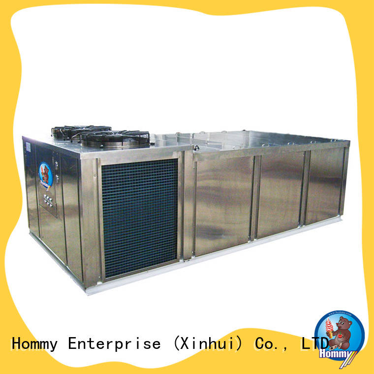 multifunctional ice block machine price unique design for hotels Hommy